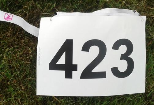 Alleen een nummer (423)