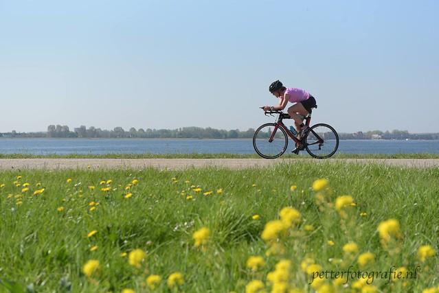 Strakke horizon, gele bloemen, roze shirt